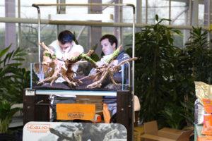 12F  [Gallery] Workshop Aquarium setup A - Z by Roberto Bielli 12F