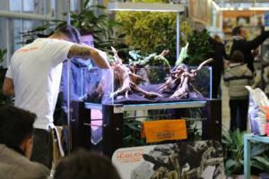 13F  [Gallery] Workshop Aquarium setup A - Z by Roberto Bielli 13F