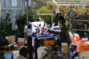 14F  [Gallery] Workshop Aquarium setup A - Z by Roberto Bielli 14F