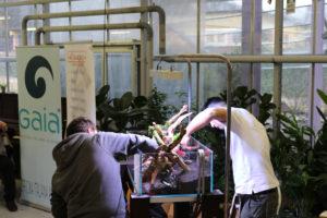 16F  [Gallery] Workshop Aquarium setup A - Z by Roberto Bielli 16F