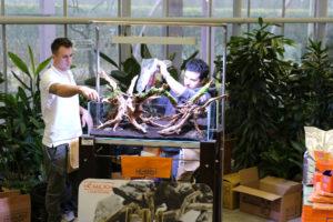 17F  [Gallery] Workshop Aquarium setup A - Z by Roberto Bielli 17F