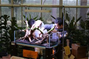 18F  [Gallery] Workshop Aquarium setup A - Z by Roberto Bielli 18F