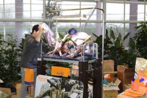 19F  [Gallery] Workshop Aquarium setup A - Z by Roberto Bielli 19F