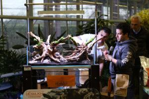 21F  [Gallery] Workshop Aquarium setup A - Z by Roberto Bielli 21F