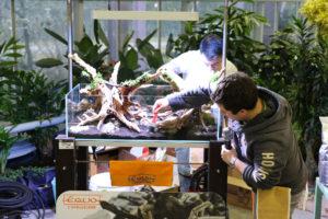 22F  [Gallery] Workshop Aquarium setup A - Z by Roberto Bielli 22F