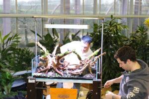 23f  [Gallery] Workshop Aquarium setup A - Z by Roberto Bielli 23f