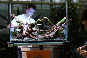24f  [Gallery] Workshop Aquarium setup A - Z by Roberto Bielli 24f