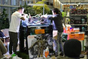 25F  [Gallery] Workshop Aquarium setup A - Z by Roberto Bielli 25F