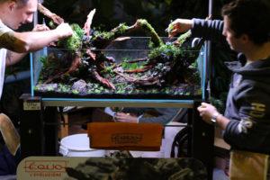 27F  [Gallery] Workshop Aquarium setup A - Z by Roberto Bielli 27F