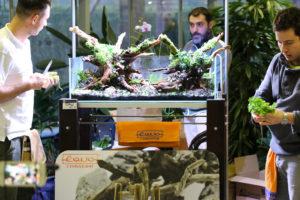 28F  [Gallery] Workshop Aquarium setup A - Z by Roberto Bielli 28F