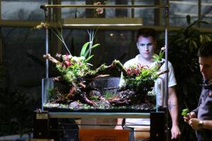 29F  [Gallery] Workshop Aquarium setup A - Z by Roberto Bielli 29F