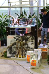 3F  [Gallery] Workshop Aquarium setup A - Z by Roberto Bielli 3F