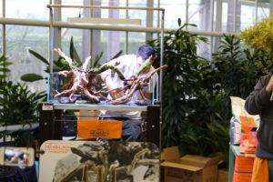 7F  [Gallery] Workshop Aquarium setup A - Z by Roberto Bielli 7F